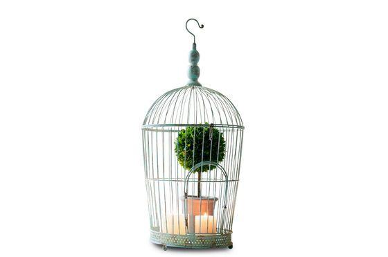 Cage à oiseaux Deselle Détouré