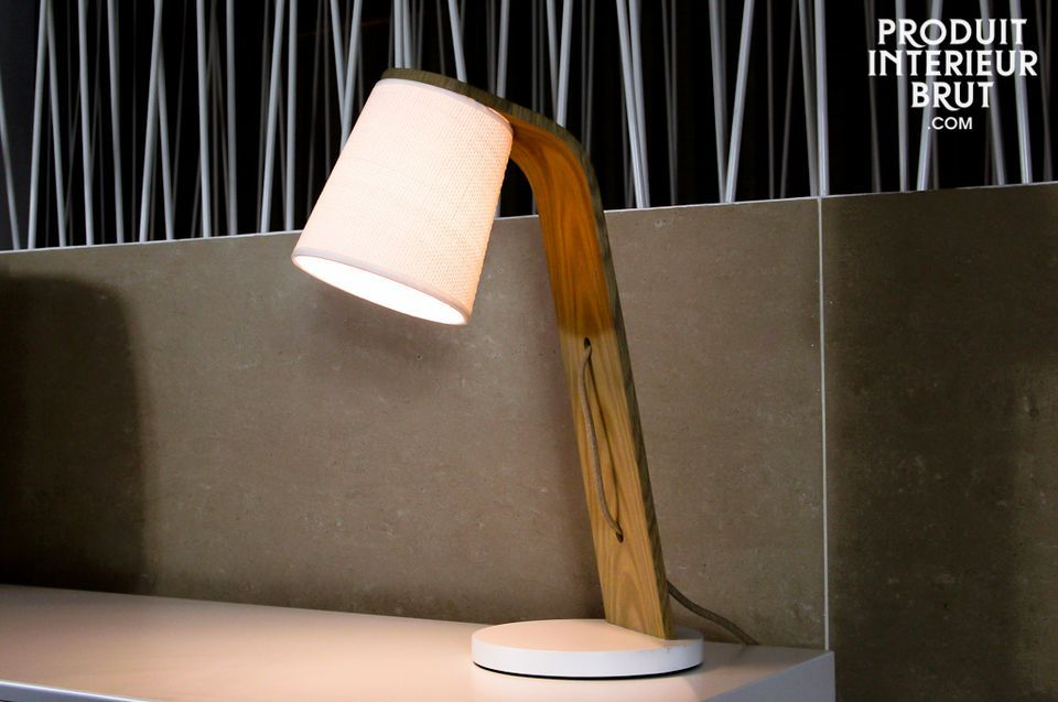 Ce luminaire est prévu pour fonctionner avec une ampoule à vis au standard E27