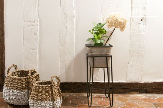 Support de plantes Rebstock