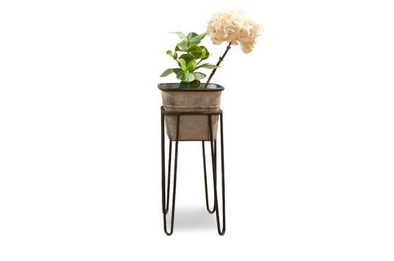 Support de plantes Rebstock Détouré