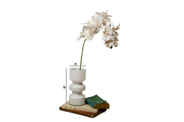 Dimensions du produit Vase en verre Ella